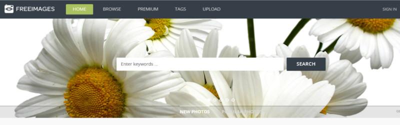 бесплатные изображения по freeimages.com