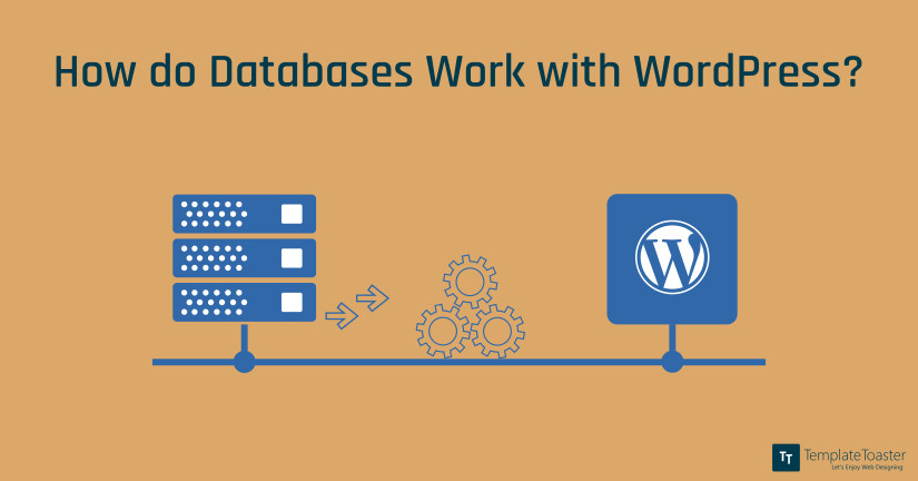 How do Databases Work with WordPress