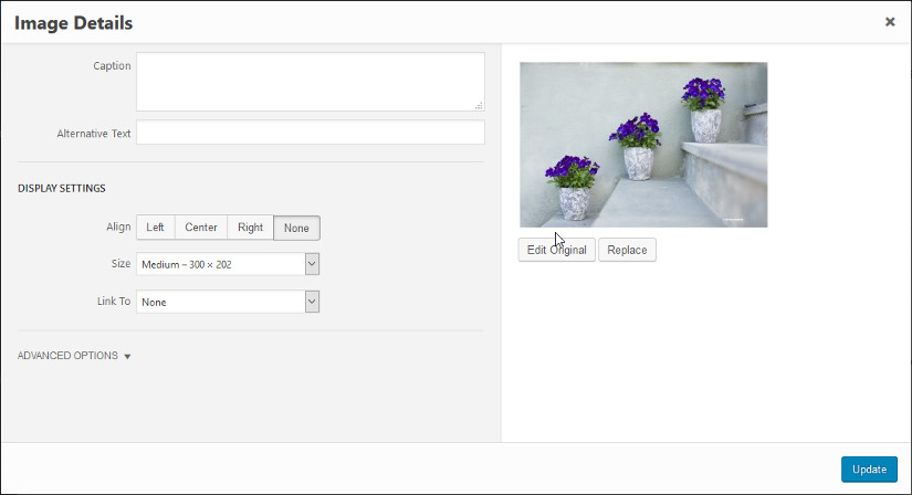 wordpress image alt text seo friendly images screenshot