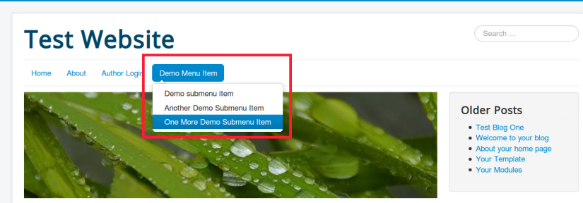 Drop down menu created in Joomla website