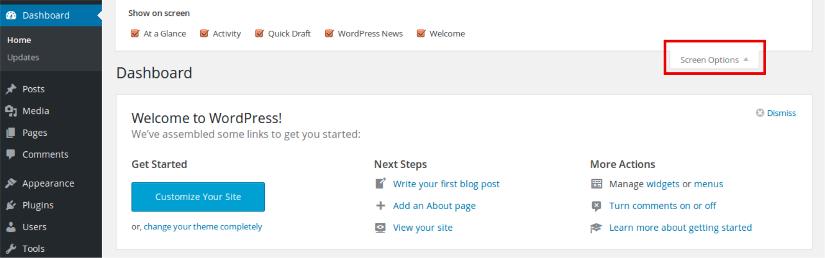 WordpPess screen option