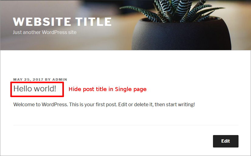 how to remove page title in wordpress screenshot