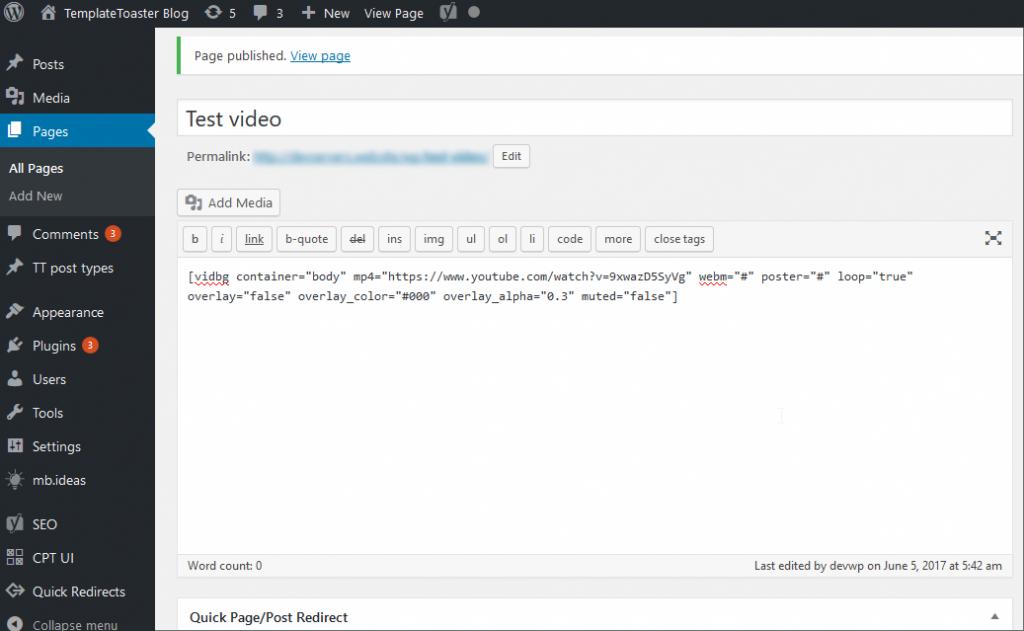 shortcode screenshot WordPress Video Background Plugin