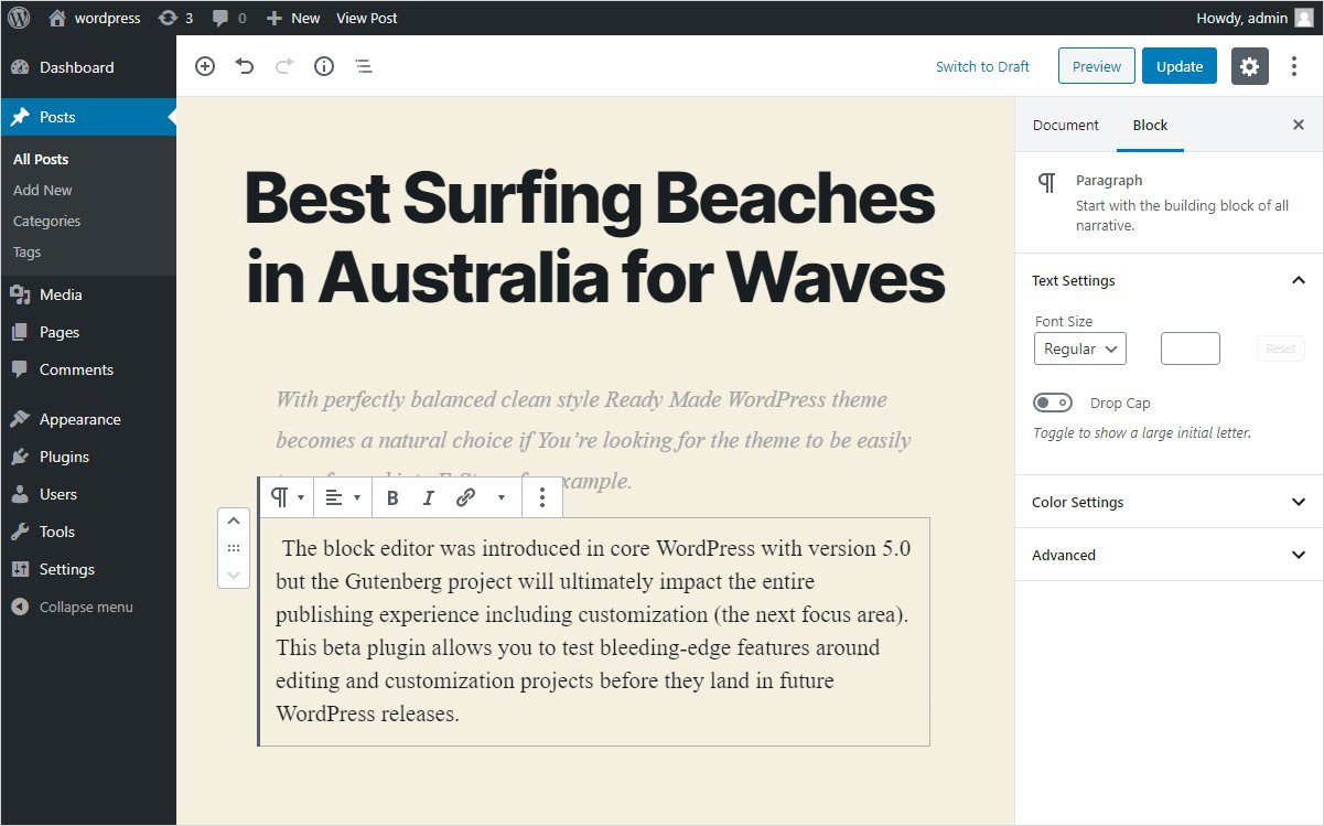 TinyMCE Advanced vs Gutenberg Editor
