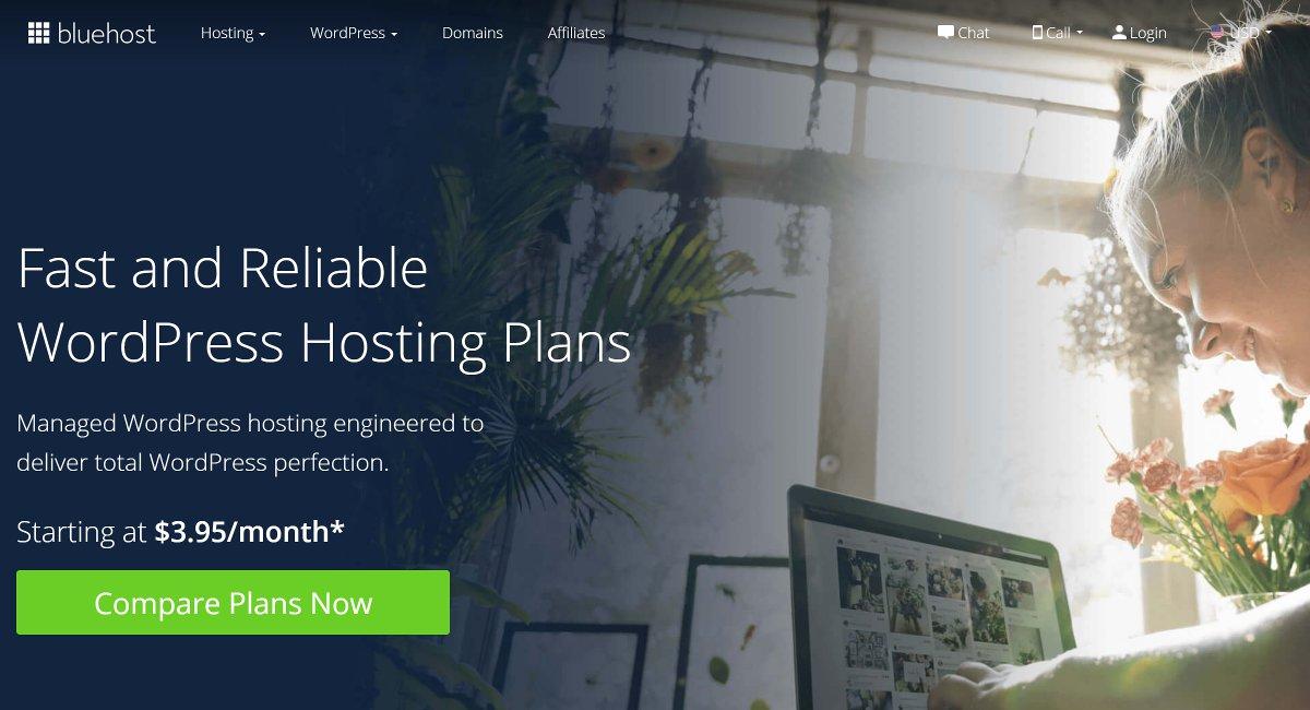 bluehost wordpress hosting providers