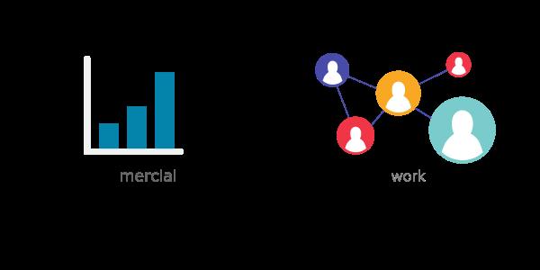 com vs net differences