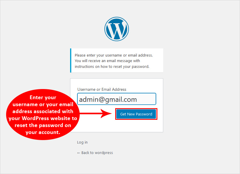add email or username to Change password in wordpress