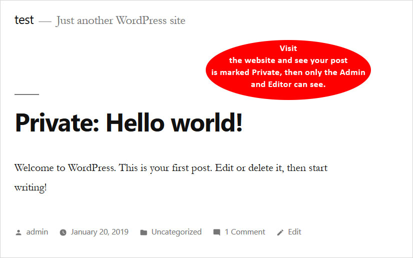 Create Private Posts in WordPress check the post