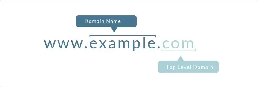 domain different form web hosting