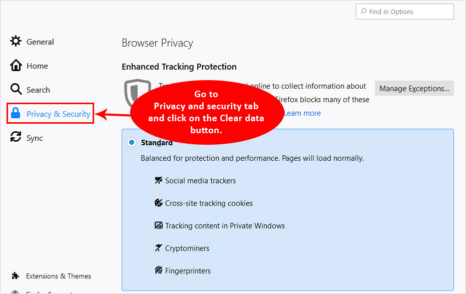 go to privacy and security tab