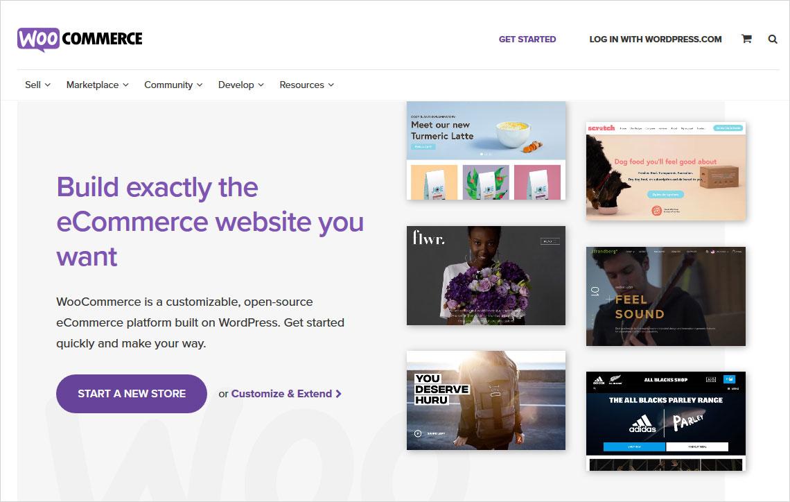 squarespace vs wordpress ecommerce website