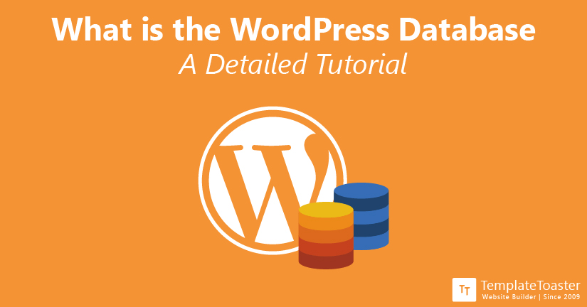 What is the WordPress Database A Detailed Tutorial