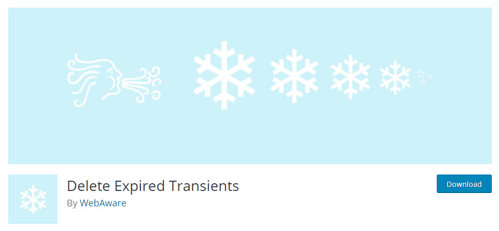 Delete Expired Transients